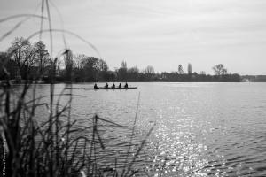 Aviron sur le lac d'Enghien-les-Bains