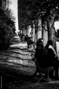 Bancs publics - parc du château de Saint-Germain-en-Laye