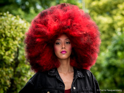 Lancement de Big Hair World